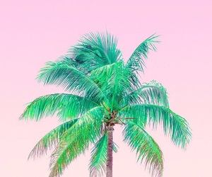 wallpaper, pink, and summer image