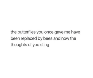 bees, butterflies, and bye image