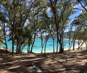 beach, Island, and blue image