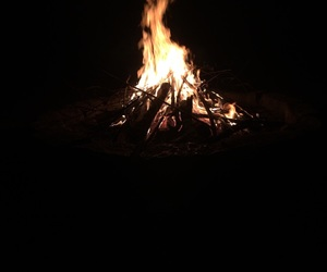 fire, forest, and life image