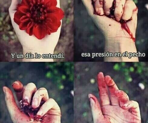 amor, brokenheart, and flor image