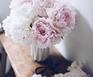 flowers, beautiful, and picture image