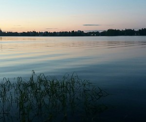 finland, midsummer, and nature image