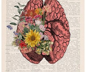 brain, book, and flowers image