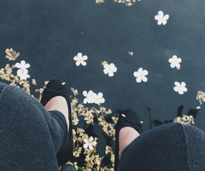 fading, flowers, and freedom image