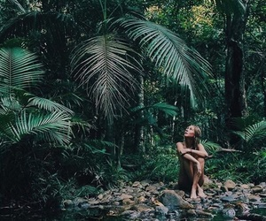tropical, jungle, and green image