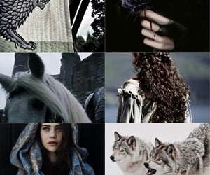 aesthetic, blue rose, and she wolf image