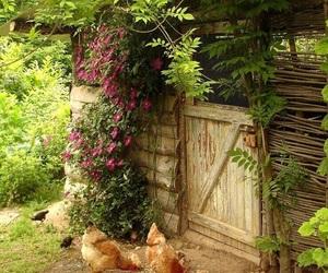 دجاج and حدائق image