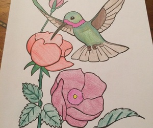 coloring, favorite, and hummingbird image