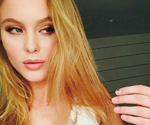 icons and zaralarsson image
