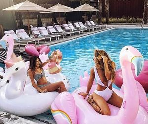 summer, pool, and friends image