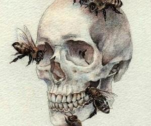 skull, bee, and art image