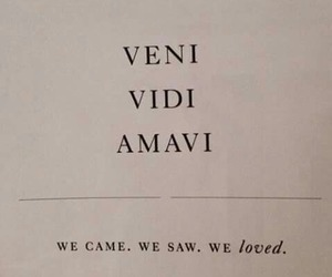 italian, love, and verbs image