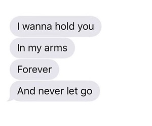 forever, in my arms, and i wanna hold you image