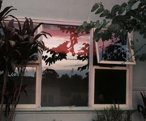 aesthetic, window, and grunge image