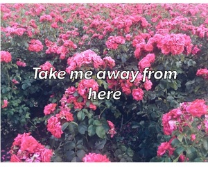 away, here, and me image