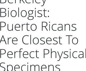facts, perfect, and boricua image