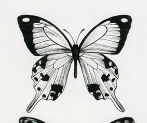 black and white, خلفياتً, and wallpaper image