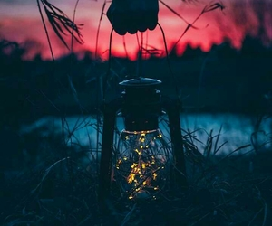 dreamy, light, and firefly image