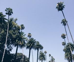 california, chill, and wallpaper image