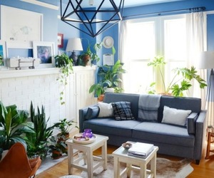 blue walls, home decor, and living room image