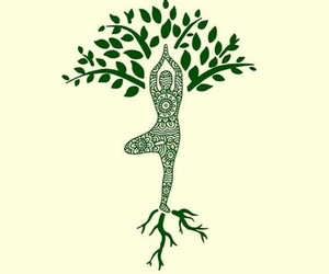 tree, yoga, and mandala image