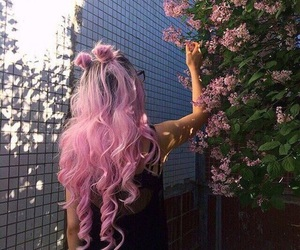 style, hair, and pink image