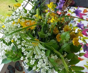 flowers, midsommar, and midsummer image