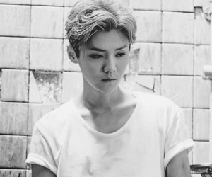 actor, chinese, and exo image