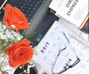 flowers, planner, and study image