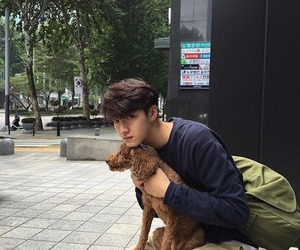 dog, korean, and ulzzang image