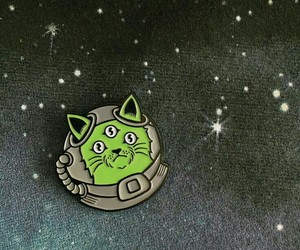 cat, pins, and space image