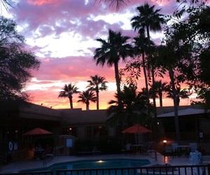 sunset, palms, and pool image