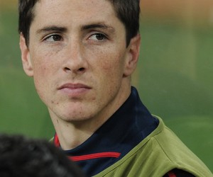 fernando torres and spain image