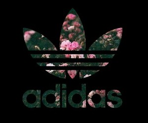 adidas, wallpaper, and backround image