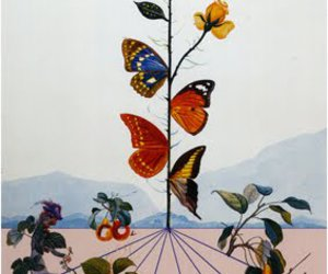 art, salvador dali, and butterfly image