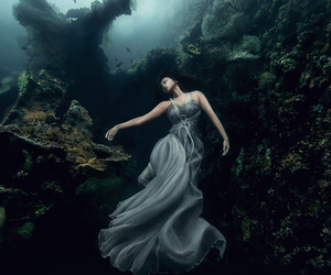 ocean, photography, and underwater image