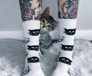 cat, tattoo, and socks image