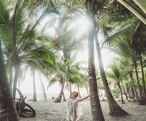 beach, girl, and jungle image