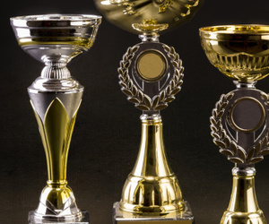 football trophies, boxing trophies, and equestrian trophies image
