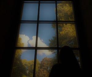 autumn, nature, and motivational image