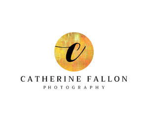 branding, stationery, and business logo image