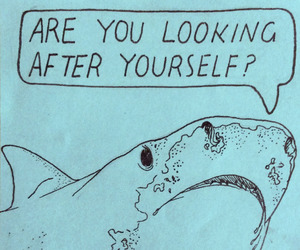 shark, blue, and quotes image
