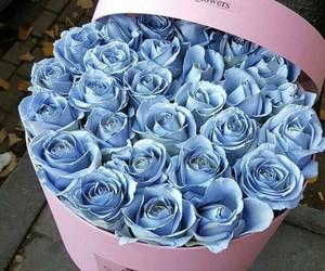 box, roses, and pink box image