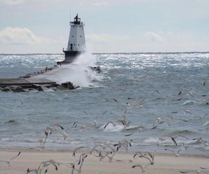 beach, sea, and lighthouse image