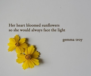 flowers, light, and poetry image