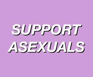 gay, lesbian, and tumblr image