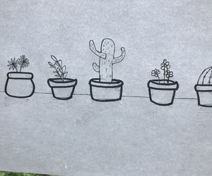 black and white, cactus, and drawings image