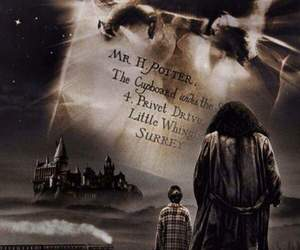 harry potter, hagrid, and hedwig image