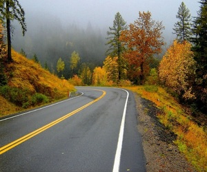 autumn and road image